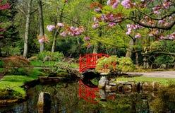 Японский сад в парке Clingendael Стоковые Изображения RF