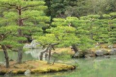 Японский сад в предыдущей осени Стоковые Фотографии RF