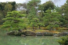 Японский сад в предыдущей осени Стоковая Фотография RF