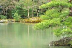 Японский сад в предыдущей осени Стоковое Изображение RF