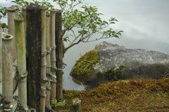 Японский сад в предыдущей осени Стоковые Фото