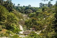 Японский сад в Сан-Диего, Калифорнии стоковое фото rf