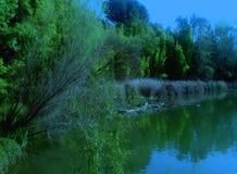 Японский сад на 2-ой вариант парка Woodward Стоковая Фотография RF