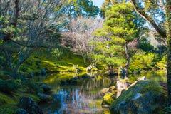 Японский сад с красивым озером стоковые фотографии rf