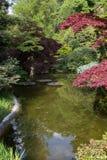 Японский сад с отражением Стоковое Изображение RF