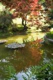 Японский сад с отражением Стоковая Фотография