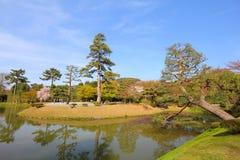 Японский сад Стоковая Фотография