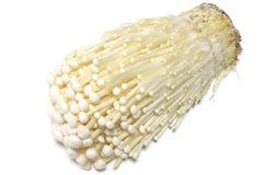 Японский свежий гриб enoki в белом #3 Стоковые Фото