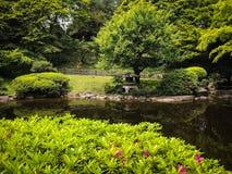 Японский спрятанный сад стоковые фотографии rf