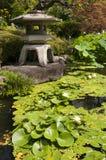 Японский фонарик с листьями lotos Стоковые Изображения RF
