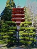японский pagoda Стоковое Изображение RF