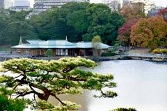 Японское Токио Hamarikyu чайного домика сада стоковая фотография
