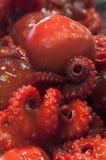 Японское delicassy - зажаренный молодой осьминог Стоковое Изображение