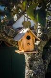 ярд белизны США дома заднего цвета птицы голубого вися красный Стоковые Фотографии RF