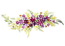 Яркая акварель крася красивые цветки Стоковые Изображения