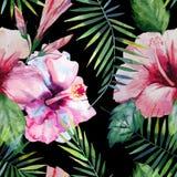 Яркая ая-зелен травяная тропическая картина лета Гавайских островов флористическая листьев троповых ладони и троповой розовой кра Стоковая Фотография RF