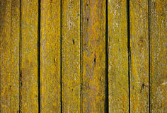 Яркая ая-зелен и желтая деревянная стена от доск Стоковые Изображения RF
