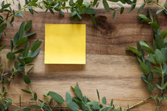 Яркая ая-зелен рамка листьев Стоковое Фото