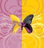 Яркая бабочка на орнаментальной предпосылке Стоковая Фотография