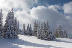 Яркая белая гора в солнечном дне стоковые изображения rf