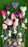 яркая весна цветков Стоковое фото RF