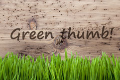 Яркая деревянная предпосылка, Gras, отправляет СМС зеленый большой палец руки Стоковое Изображение