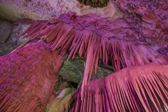 Яркая и красочная пещера Стоковое Изображение RF