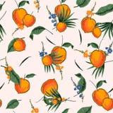 Яркая и свежая тропическая безшовная картина с иллюстратором лета оранжевым в дизайне вектора для моды, ткань, сеть, обои и бесплатная иллюстрация