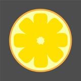 Яркая иллюстрация лимона Cutaway контраста Стоковые Изображения RF