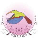Яркая иллюстрация колибри летания Стоковые Фотографии RF