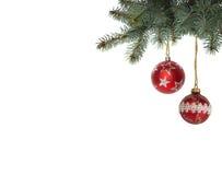 Яркая красная смертная казнь через повешение шарика рождества от изолированных рождественских елок Стоковая Фотография RF