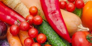 Яркая предпосылка зрелых овощей Стоковое фото RF