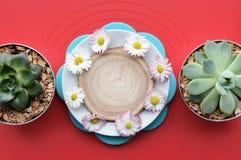 Яркая сервировка стола Белые плиты на красной салфетке Стоковые Изображения
