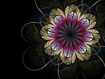 яркая фракталь цветка ровная Стоковая Фотография