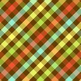 яркая шотландка картины Стоковая Фотография