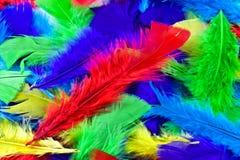Яркая feathery предпосылка стоковые изображения rf