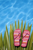 яркие ботинки бассеина стоковое изображение