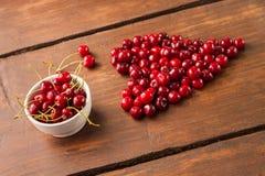 Яркие вишни красного цвета свеже выбранные предыдущие сладостные Стоковое Изображение RF