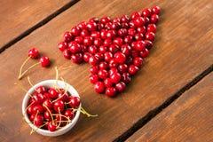 Яркие вишни красного цвета свеже выбранные предыдущие сладостные Стоковые Фото