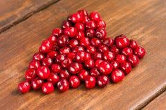 Яркие вишни красного цвета свеже выбранные предыдущие сладостные Стоковые Изображения