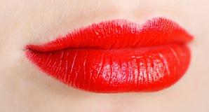 яркие губы стоковое изображение