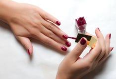яркие женщины политуры ногтя s рук Стоковые Фото