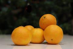 Яркие желтые tangerines Стоковые Фотографии RF