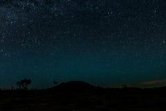 Яркие звезды над пустыней дерева Иешуа Стоковое Изображение RF