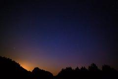 яркие звезды ночного неба На фоне вороны дерева Стоковые Изображения