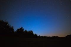 яркие звезды ночного неба На фоне вороны дерева Стоковые Фото