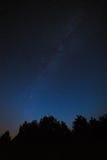 яркие звезды ночного неба На фоне вороны дерева Стоковое Изображение RF