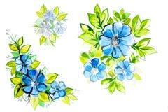 Яркие красивые голубые цветки с листьями Стоковое Фото
