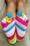 яркие носки Стоковая Фотография RF