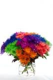 Яркие покрашенные цветки Стоковая Фотография RF